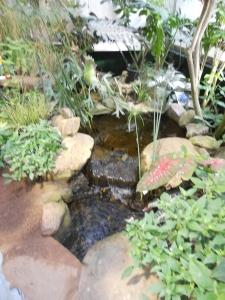 Tucson Botanical Gardens 11-3-12 with Krysti 022