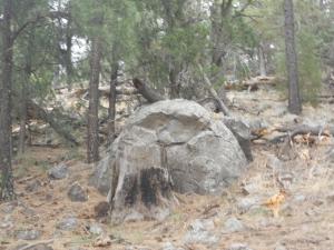 Parker Canyon, Flagstaff, Showlow, Apache Lake 049